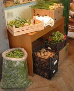 WEBKAMRA : LAUNCH OF THE FIRST VEGETABLES BASKETS OF THE SEASON